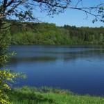 lac du Morvan (Bourgogne)