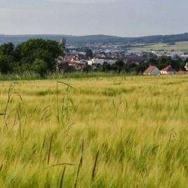 Randonnée sur les chemins de Compostelle en Bourgogne