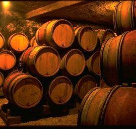 vins-cave-bourgogne a velo