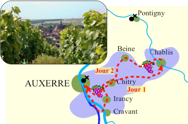 carte De vignes en caves