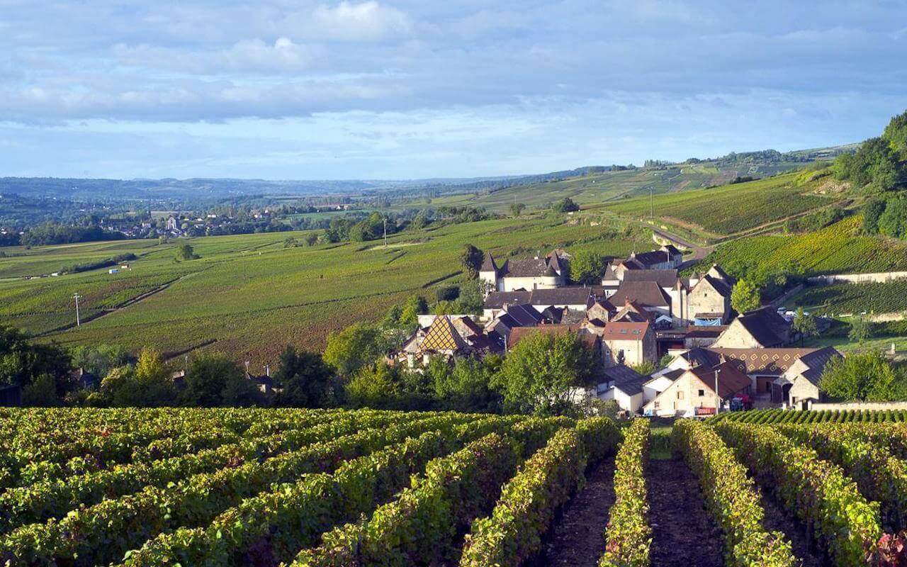 Entre vignobles et canaux, Santenay en Bourgogne
